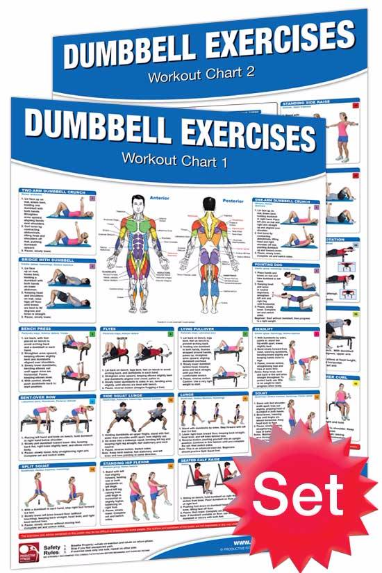 Dumbbell Exercises Poster Set | Productive Fitness